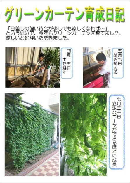 グリーンカーテン2015.JPG
